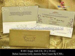 Undangan Pernikahan Anggi - Aldi