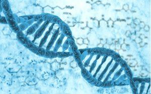 kode genetika
